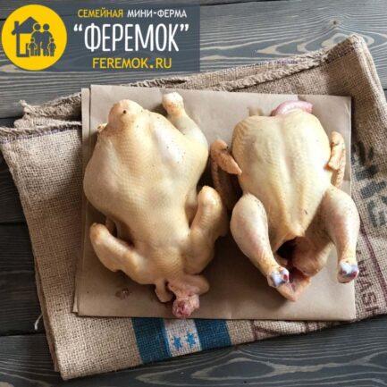 Цыпленок бройлер домашний крупный 55-60 дн. (2.3-3 кг.) Закончились!
