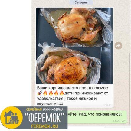 Цыпленок корнишон 0.9-1 кг. Тушки молодых цыплят. Нежое и сочное мясо!