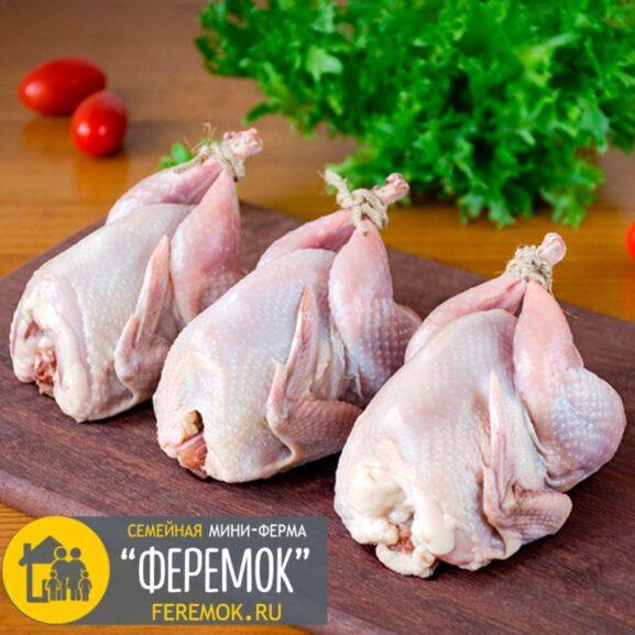 Мясо молодых перепелов. Возраст 45-50 дн. Вес 200-250 гр.