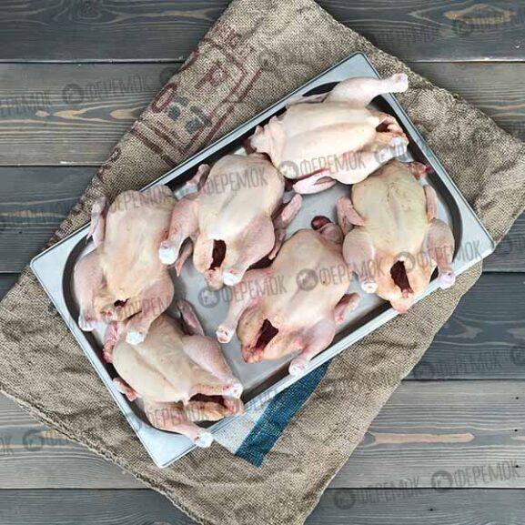 Цыпленок корнишон 0.75-1 кг. Тушки молодых цыплят.