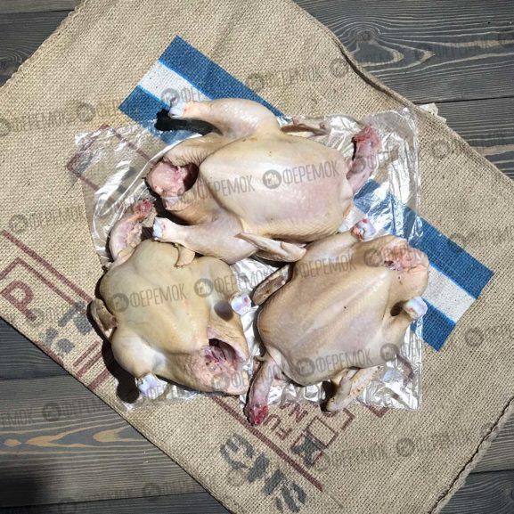3 шт. Цыпленок бройлер средний 40-45 дн. (1.4-1.8 кг.) + бесплатная доставка